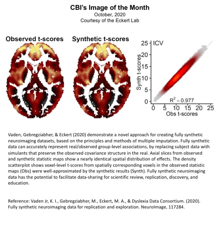 CBI Image of the Month for October 2020