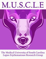 Lupus Research Group | College of Medicine | MUSC