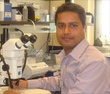 Photo of Dr Pandey Postdoctoral Fellow