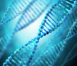 Graphic of multiple DNA double helices on a blue background