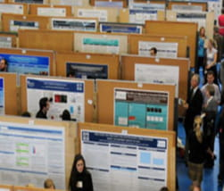 Arial view of multiple rows of research posters displayed on boards
